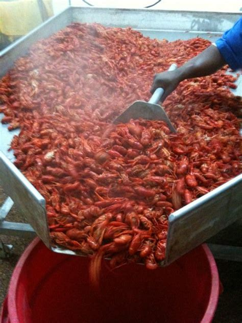 Here Are The 12 Best Restaurants In Louisiana To Get