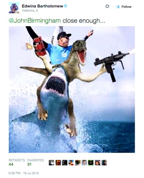 The 18 Best Mick Fanning Shark Memes All in One Place